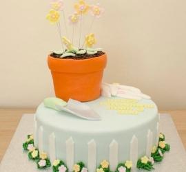 Garden Plant Pot Cake